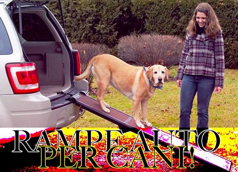 migliori rampe auto per cani