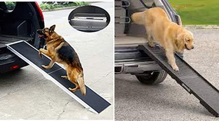Rempe per cani per salire in auto